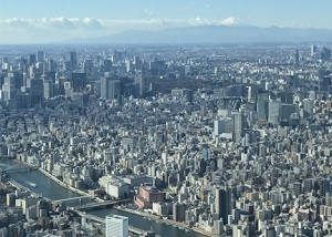 Scenery of central Tokyo and Mt.Fuji