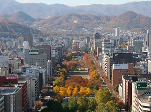 Scenery from Sapporo TV Tower in autumn