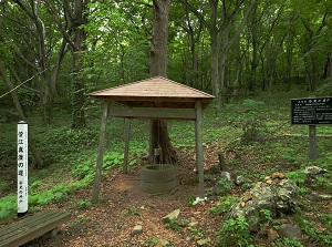 An old well near Goshado