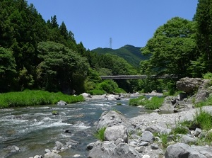 Mitake gorge in early summer