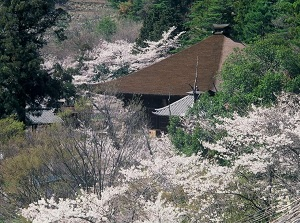 Daizenji temple in spring