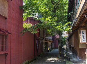 An alley in Kazuemachi-Chayagai