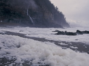 Sea foam around Tarumi Falls