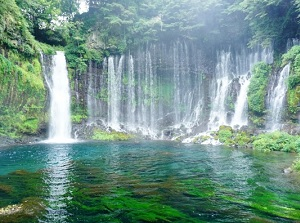 Shiraito Falls in summer