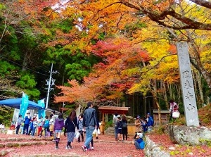 Entrance to Horaiji in autumn