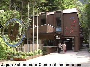 Japan Salamander Center at the entrance