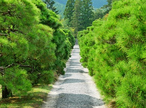 Path in Shugakuin Imperial Villa