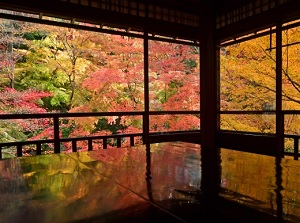 Colored leaves in Ruriko-in