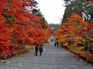 Momiji-no-Baba in Nison-in