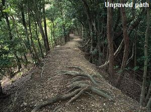 Unpaved path of Kumano Kodo