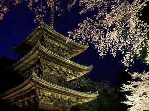 Three-storied Pagoda in spring