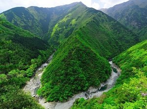 Hinoji Gorge in Iya Valley
