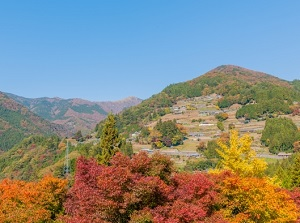 Ochiai Village in autumn