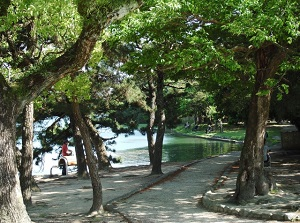 Walking trail by the pond in Ohori Park