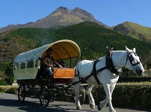 Horse-drawn coach in Yufuin