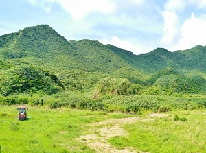 Mountains in Iriomote Island